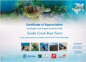 Ningaloo Turtle Program - Certificate of Appreciation 2017